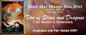 Name that Dragon Banner