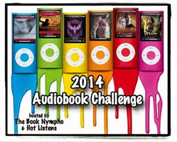 2014-Audio-Challenge_thumb[2]