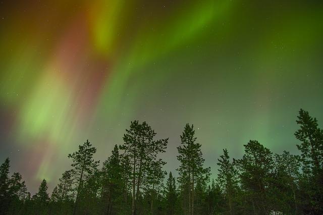 aurora-borealis-768703_640