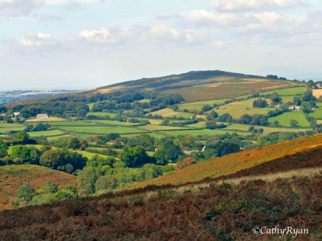 Dartmoor19