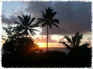 hawaii-500285_640