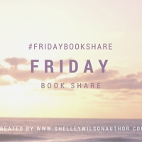 #FridayBookShare ~ Scotch On The Rocks by @lizzie_lamb Contemporary #Romance @ShelleyWilson72