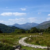 Hike round Capel Curig #Photography #WeekendBlogShare #Snowdonia