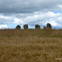 #WordlessWednesday ~ The #Duddo Stones amid the #Northumbrian countryside #Photography