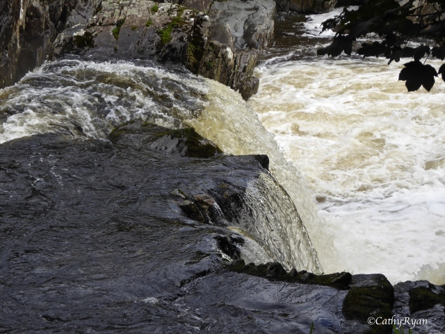 river6