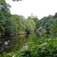 #WordlessWednesday ~ Lovely river walk in #Warkworth #Northumberland #Photography