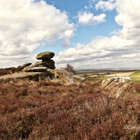 Brimham Rocks, North #Yorkshire #Photography