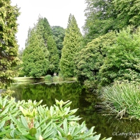 #WordlessWednesday ~ Bovey Castle Grounds #Photography