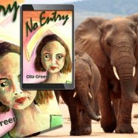 #GuestPost from Gila Green #Author of #YA Novel No Entry @green_gila #Environmental