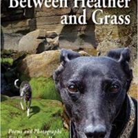 Between Heather and Grass: #Poems and #Photographs Filled with Love, Hope and Whippets by Xenia Tran @WhippetHaiku