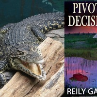 Pivotal Decisions (Moonlight and Murder #2) by @reily_garrett #RomanticSuspense #FridayReads