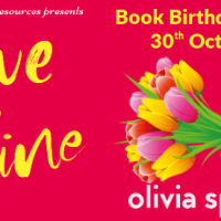 #BookBirthdayBlitz ~ Love Offline by Olivia Spring ~ Looking for Romance in Real Life... @ospringauthor @rararesources