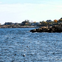 Almost #SilentSunday ~ Rockport, Massachusetts #Photography #Scenery #Coast