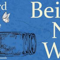 Being Netta Wilde by Hazel Ward @hazelward #BlogTour #GuestPost  #ContemporaryFiction @rararesources