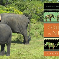 Cold Case in Nuala (The Inspector de Silva Mysteries Book 10) by Harriet Steel #HistoricalFiction #Mystery @harrietsteel1