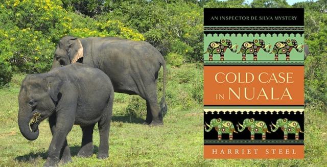 elephants-3751168_1920 copy