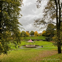 #SilentSunday ~ Autumn Colours #seasons #autumn #photography